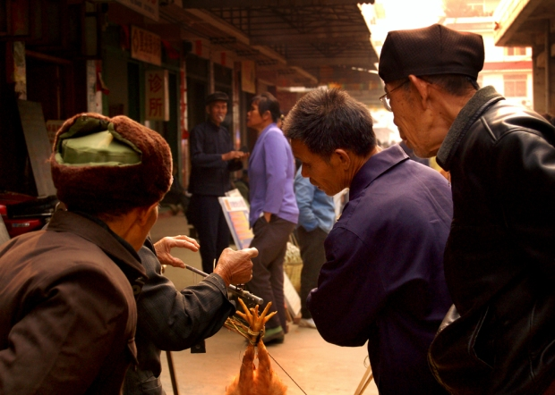 vendedor de gallinas